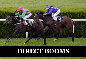 Direct Booms Professional Horse Racing Tipster