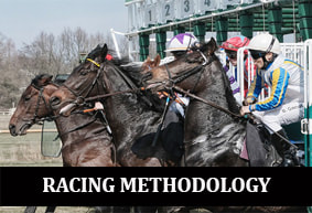 Racing Methodology - Professional Horse Racing Tipster