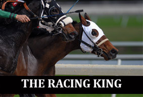 The Racing King - Professional Horse Racing Tipster